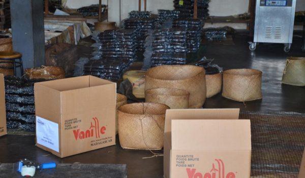 Bourbon vanilla bean supplier